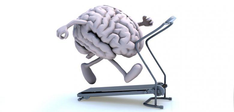 dibujo de cerebro